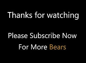 bear;bears;chub;chubby-bear;jerk-off;cumshot;cock;fat;big-dick;big-cock;hairy;cum-load;gay-chubs;chubs;chubby-guy-sex;chubby-guy,Solo Male;Gay;Bear;Chubby Hot Chub Jerks...